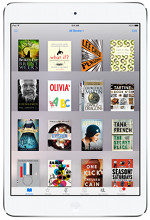 iPad eBooks